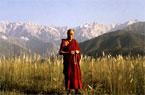 Year of Tibet