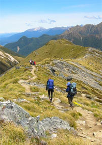 Tramping The South
