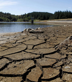 New Zealand suffers 'most widespread' drought in 30 years