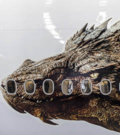 Air New Zealand Plane Gets The Hobbit Dragon Decals