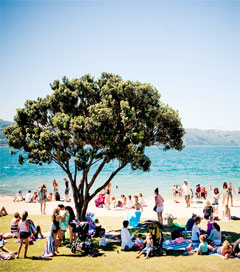 New Zealand's Warm Weather Patterns to Continue