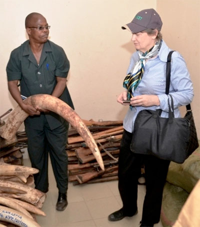 Helen Clark Joins Fight to Ban Ivory Trading