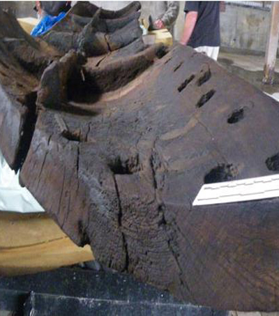 600-year-old Waka Found in New Zealand