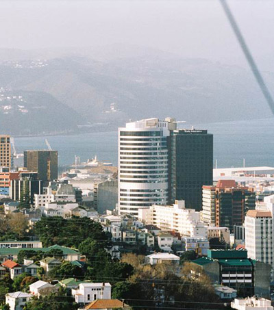 Wellington Acting like a City but Loving like a Village