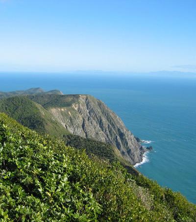"Kapiti Coast's captivating ""timeless stretch of sand and sea"""