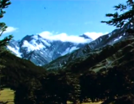 Wildlife of the Mountains (1958)