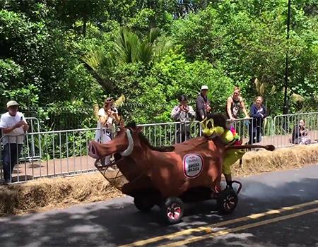 Redbull Trolley Grand Prix 2015