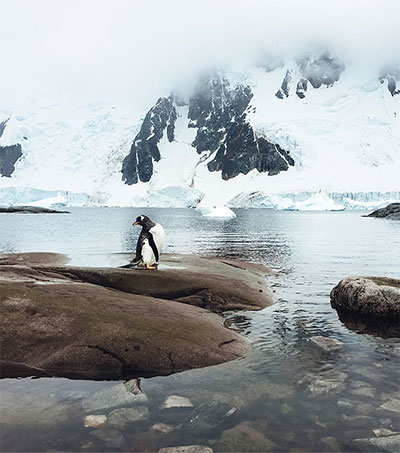 Adventurer Captures Antarctica Through iPhone Lens