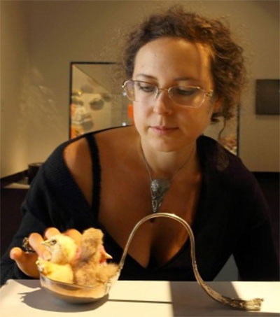 Julia DeVille's Taxidermied Chicks Wins Prize