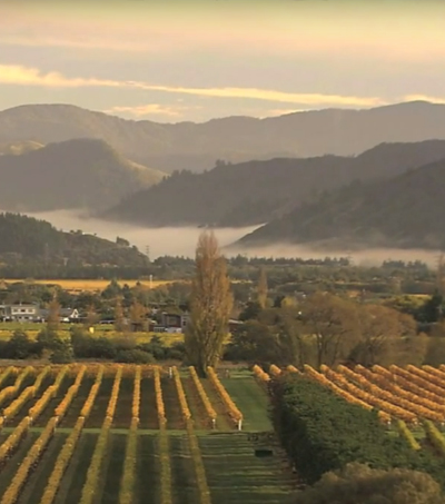 Stops You Need to Make On Your South Island Road Trip