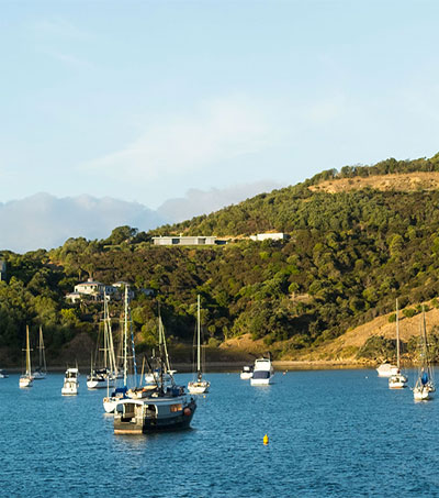 Waiheke One of World's Best Islands
