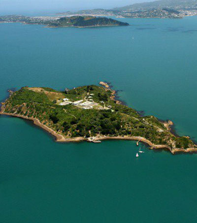 Peter Jackson Eyes NZ Island For Tourism Project