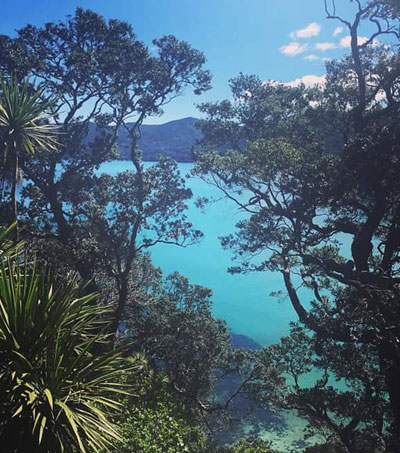 Waiheke Island and Great Barrier Island