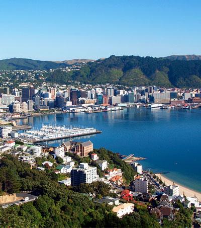 48 Hours In Wellington