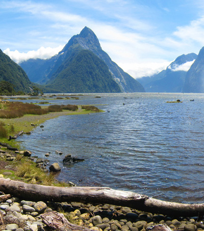 Milford Sound NZ's Most Instagrammed Place