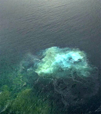 Largest Underwater Eruption Discovered off NZ