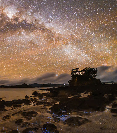 Great Barrier Island Has Star Quality