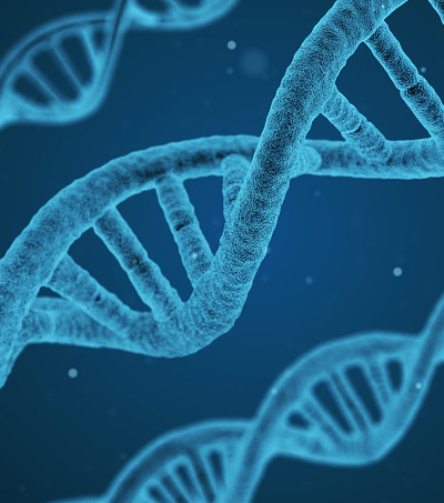 NZ DNA Software Helps Conviction in US Court Case