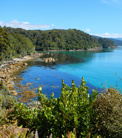 Stewart Island One of Business Insider's Must Visit Islands