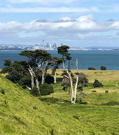 Auckland's Browns Island a Green Haven