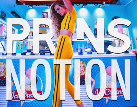 PRINS – Notion