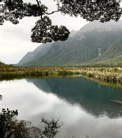 Then & Now: NZ's Natural Beauty on Display in Turn-of-the-Century Photos