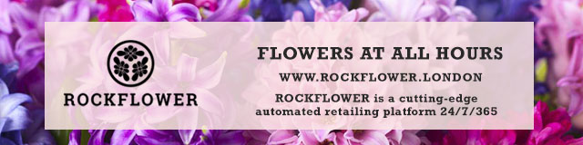 rockflower