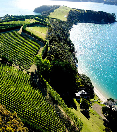 Waiheke's Man O' War Vineyards is Otherworldly