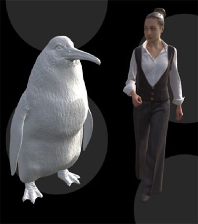 Human-Sized Penguin Lived in New Zealand