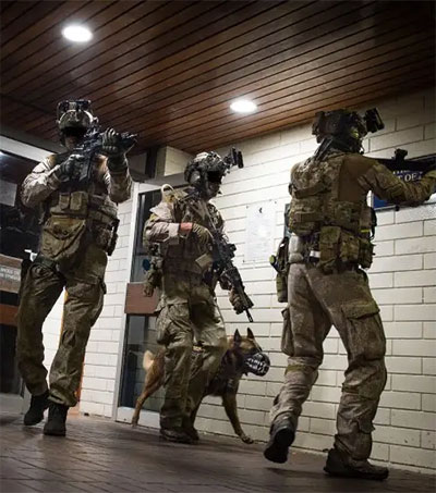 SAS One of Top Special Ops Forces in the World