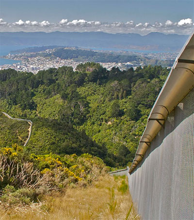 Zealandia a Nature Reserve with a 500-Year Plan